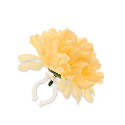 BASIL DAHLIA FLOWER yellow