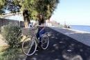 Bicicleta Classica Cidade Vintage Cicli Adriatica City Retro Nut Go By Bike