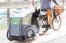 Atrelado Bicicleta Cidade Croozer Dog Bruuno Go By Bike